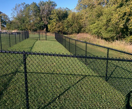 black chain link fence at dog park in iowa